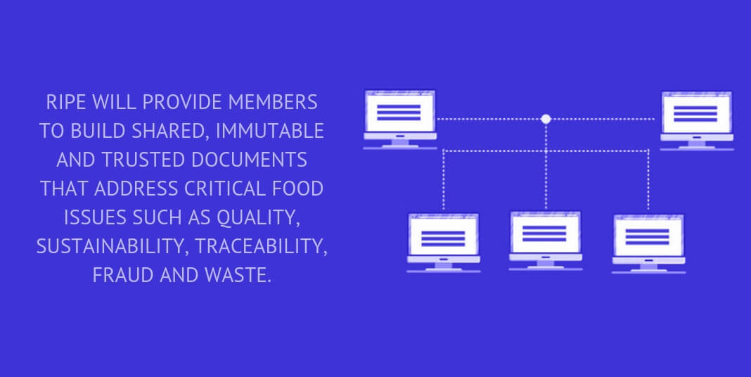 RIPE WILL PROVIDE MEMBERS TO BUILD SHARED, IMMUTABLE AND TRUSTED DOCUMENTS THAT ADDRESS CRITICAL FOOD ISSUES SUCH AS QUALITY, SUSTAINABILITY, TRACEABILITY, FRAUD AND WASTE.